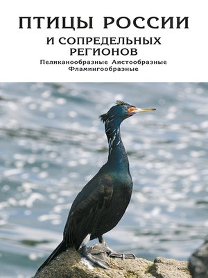 cover image of Птицы России и сопредельных регионов. Пеликанообразные, Аистообразные, Фламингообразные