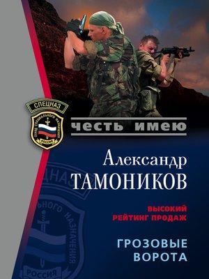 cover image of Грозовые ворота
