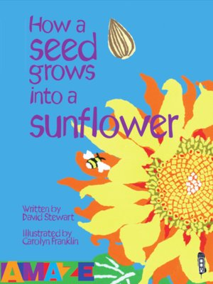cover image of How a seed grows into a sunflower