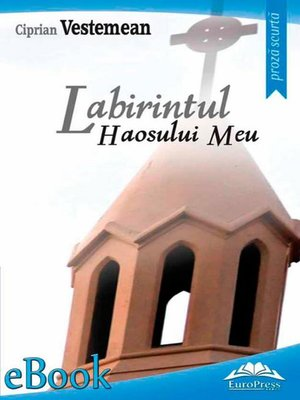 cover image of Labirintul haosului meu