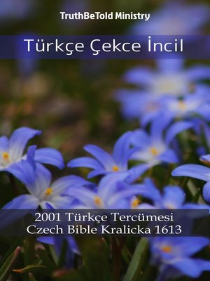 cover image of Türkçe Çekce İncil
