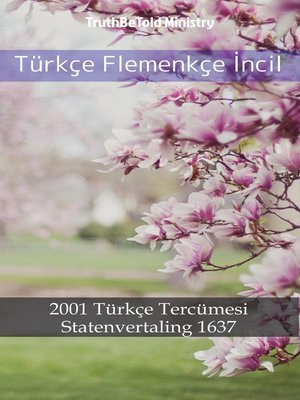 cover image of Türkçe Flemenkçe İncil