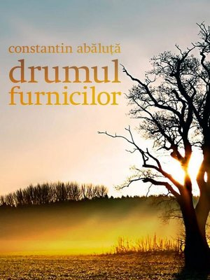 cover image of Drumul furnicilor