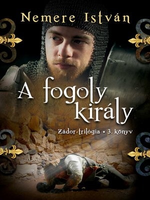 cover image of A fogoly király