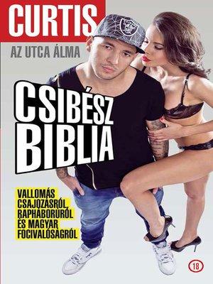 cover image of Curtis - Csibészbiblia