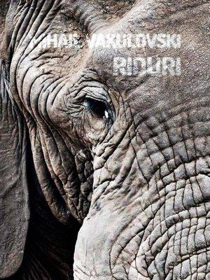 cover image of Riduri