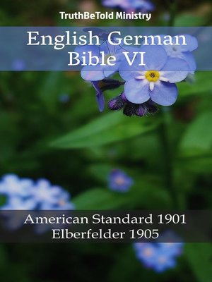 cover image of English German Bible VI