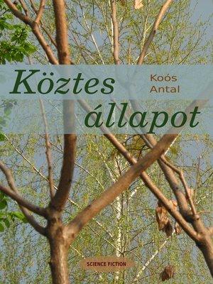 cover image of Köztes állapot