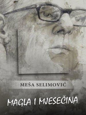 cover image of Magla i mjesečina