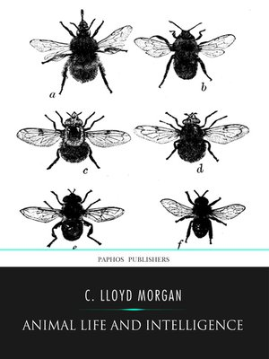 cover image of Animal Life and Intelligence