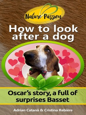 cover image of How to look after a dog