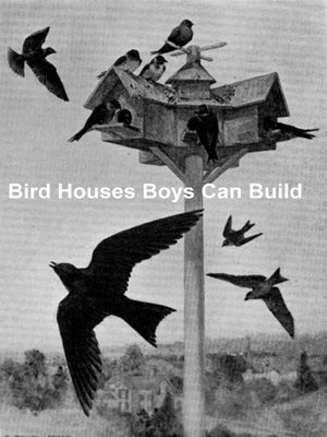 cover image of Bird Houses Boys Can Build