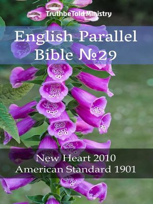cover image of English Parallel Bible No29