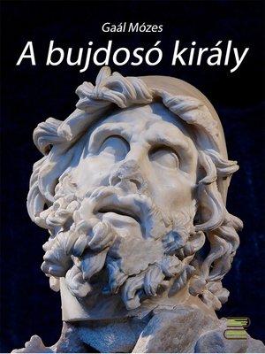 cover image of A bujdosó király
