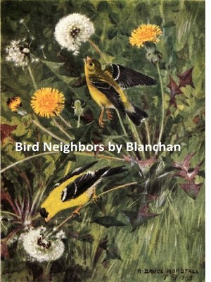 cover image of Bird Neighbors