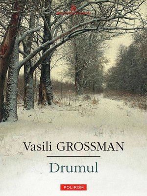 cover image of Drumul