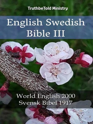 cover image of English Swedish Bible III