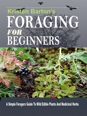 cover image of Foraging For Beginners