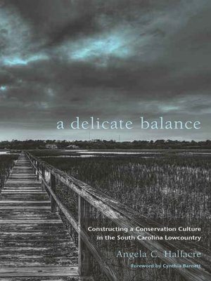 cover image of A Delicate Balance