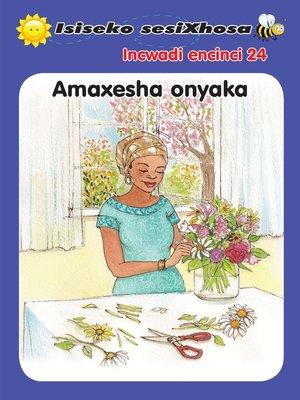 cover image of Isiseko Sesixhosa Grade R Amaxesha Onyaka