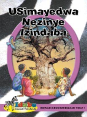 cover image of IdubGrad ed Reader Purpl1: Usimayedwa Nezinyizindaba