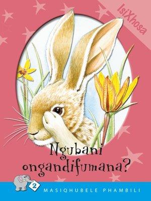 cover image of Masiqhubele Phambili Level 2 Book 3: Ngubane ...