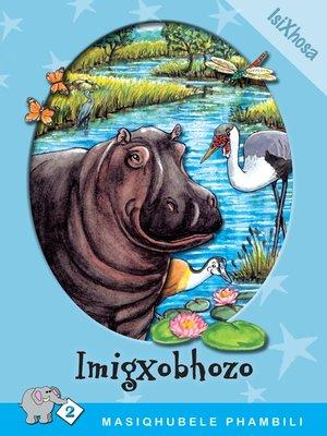 cover image of Masiqhubele Phambili Level 2 Book 5: Imigxobhozo