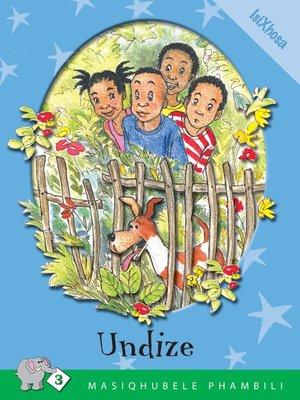 cover image of Masiqhubele Phambili Level 3 Book 2: Undize