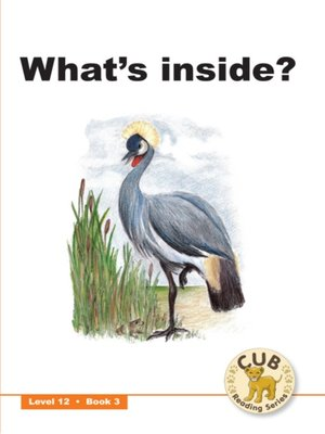 cover image of Cub Reading Scheme Level 12, Book 3: What's Inside