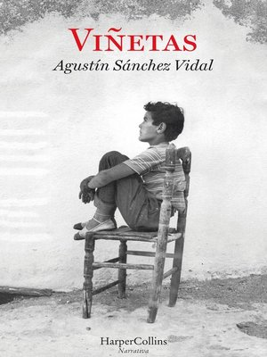 cover image of Viñetas