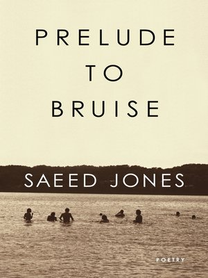 cover image of Prelude to Bruise