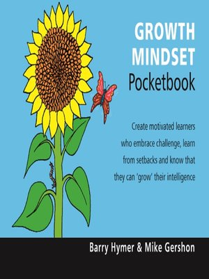 the balance sheet pocketbook pdf