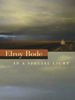 cover image of In a Special Light
