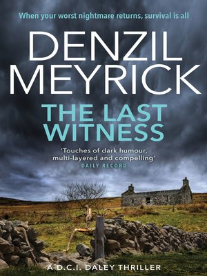 cover image of The Last Witness