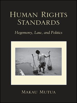 cover image of Human Rights Standards