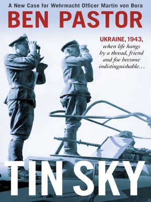 cover image of Tin Sky