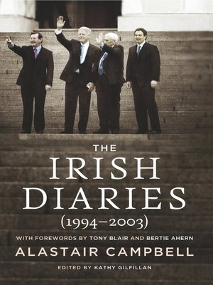cover image of The Irish Diaries