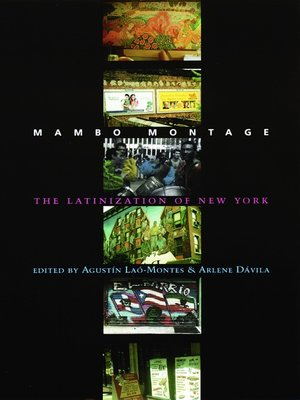 cover image of Mambo Montage