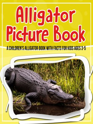 cover image of Alligator Picture Book