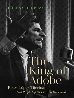 cover image of The King of Adobe