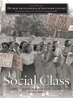 cover image of Volume 20: Social Class