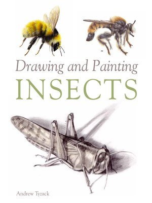 cover image of Drawing and Painting Insects