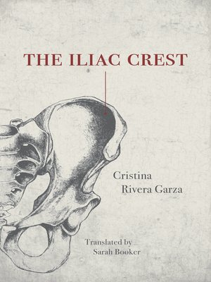 cover image of The Iliac Crest