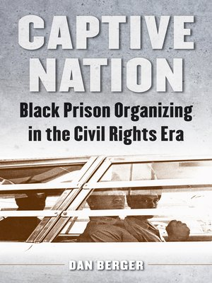 cover image of Captive Nation
