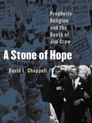 cover image of A Stone of Hope