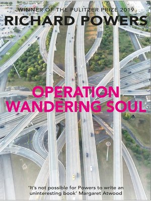 cover image of Operation Wandering Soul