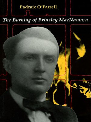 cover image of The Burning of Brinseley MacNamara