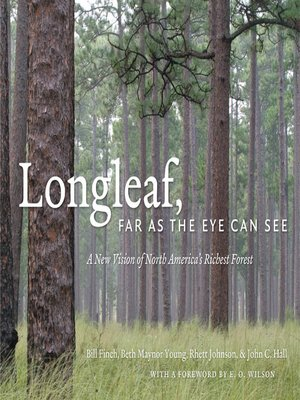 cover image of Longleaf, Far as the Eye Can See