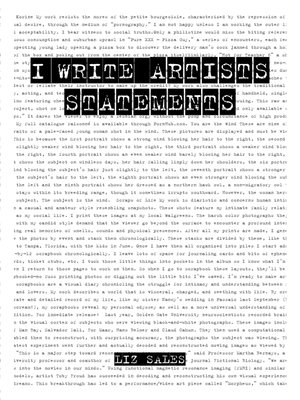 cover image of I Write Artist Statements