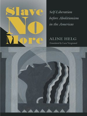 cover image of Slave No More